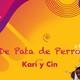 Guanajuato pt. II | De pata de perro Ep. 131119