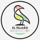 31. COVID19 - #EstaCrisisNoLaPagamos (avance)