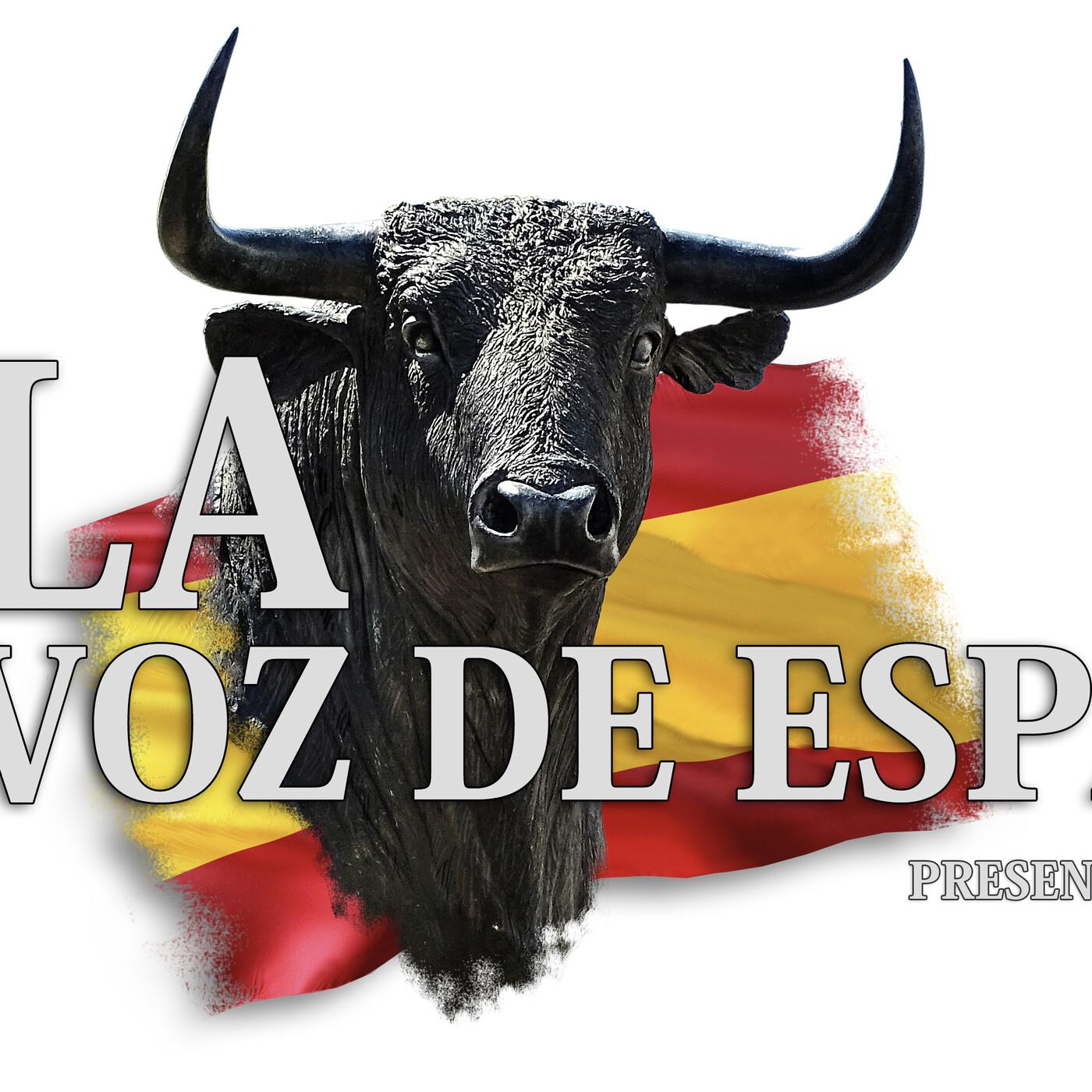 LA VOZ DE ESPAÑA Ed: 245 (14 de Junio)