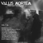 Vol. 7.36 Memories