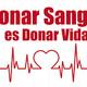 Jornada para salvar vidas humanas
