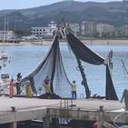 Pocas capturas de bocarte y el chicharro aparece cerca de la costa de Santoña/Miguel Fernández, patrón mayor 29/05/2020