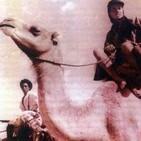 40 Años del Sahara Español - 2ª Parte - Cnel. Fernando Moreno Pardo