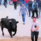 Els 'bous al carrer' posen a prova la 'unió' dins del nou Consell