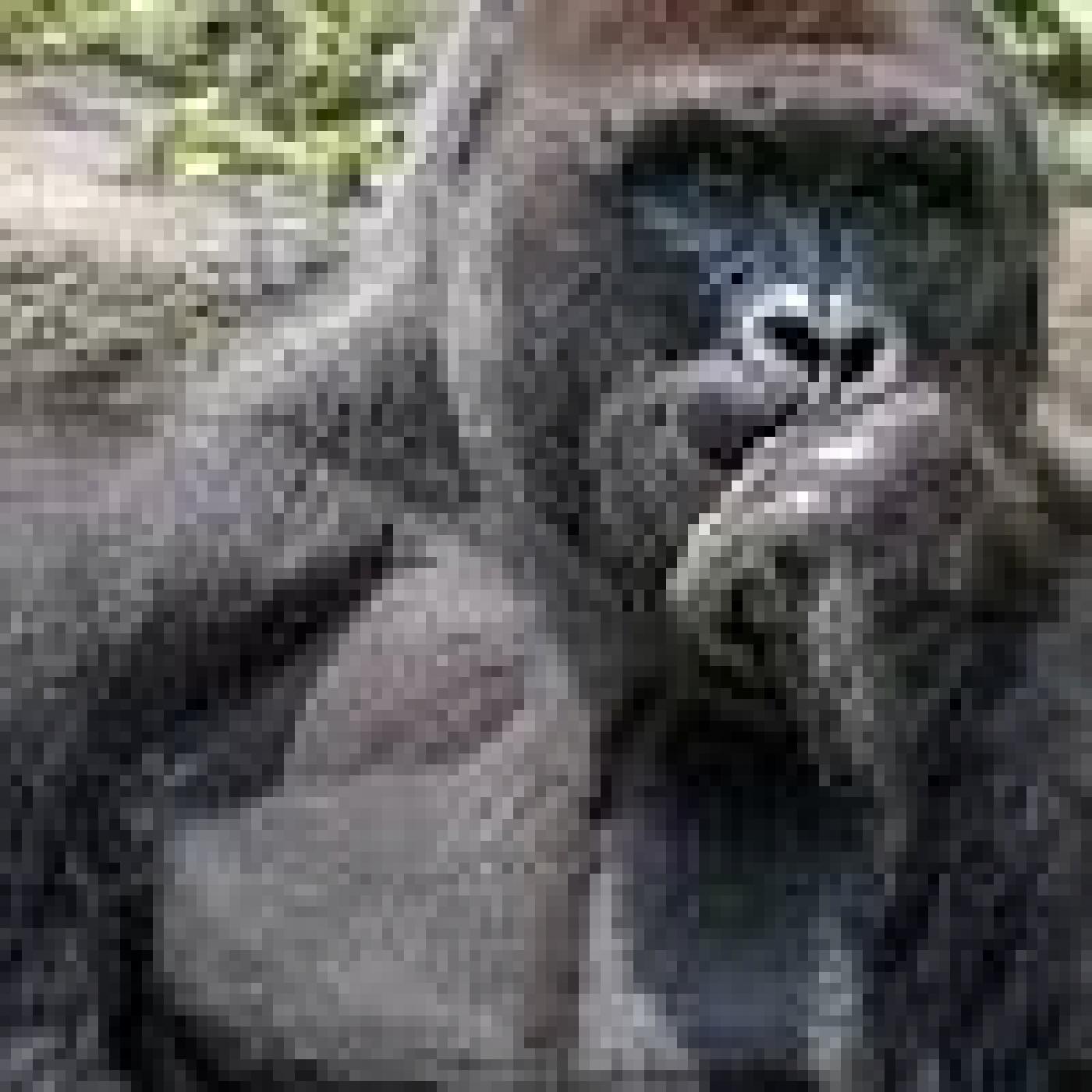 Harambe el gorila asesinado ¿Se tomó la mejor decisión? ¿qué falló?