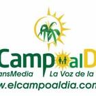 eL CaMPo aL Dia sab 15 Agosto 2020