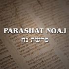 Parashat Noaj - 2019