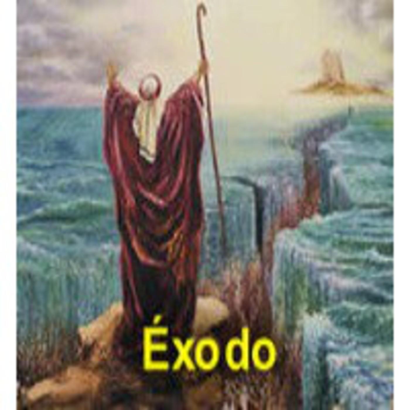 La biblia audio complete
