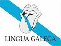 O Galego en Lugo hoxe 2015