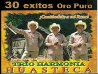 Trio Armonía Huasteca 30 exitos oro puro