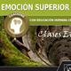 EMOCIÓN SUPERIOR Y ESTÉTICA, con Coaching Integral EHCI