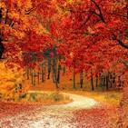 CONSEJOS DE SALUD: El otoño