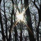 La luz del fuego del Espíritu