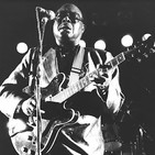 Especial jimmy rogers 237