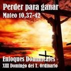Perder para ganar. XIII Domingo del Tiempo Ordinario (Mateo 10,37-42)