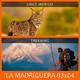 LA MADRIGUERA 03x04 - LINCE IBÉRICO / TREKKING (01 / 2020)