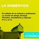 41b- Lo doméstico