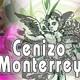 El Ángel de tu Salud - CENIZO DE MONTERREY II