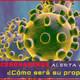 Cómo predije el Coronavirus y la alarma social