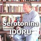 Serotonina de Michel Houellebecq e IDORU de William Gibson.
