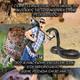 Ankawa Africa 3x03 - Como sobrevivir al ataque de un animal salvaje en África!