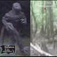 relatos del lado oscuro - que es eso?.....el hombre lagarto de scape ore