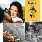 NOS FUIMOS A TAILANDIA con el veterinario Francesc Osorio// SILVIA JATO y CARACOLI// PelÍcula UN GATO EN LA PARED