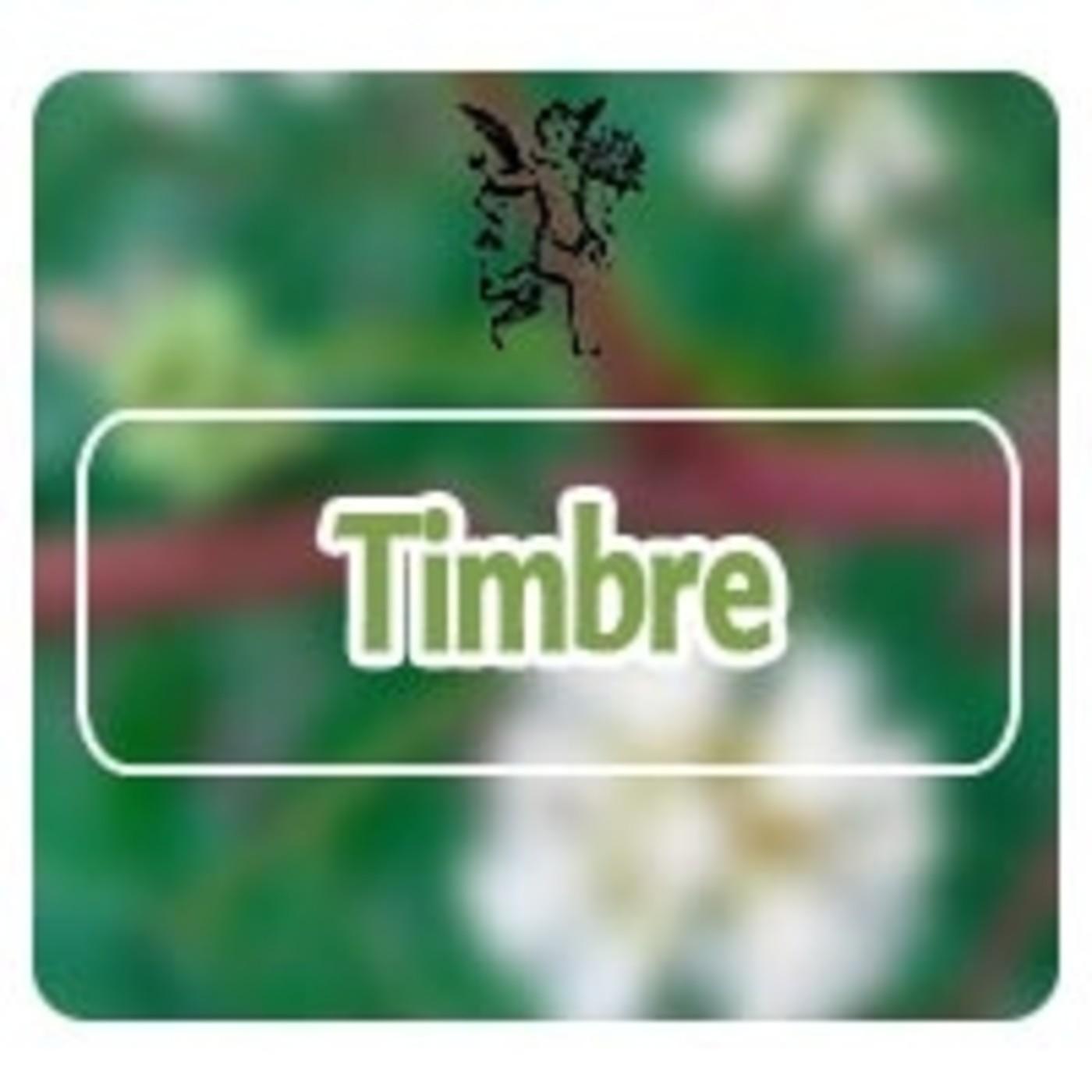 El Ángel de tu Salud - TIMBRE**