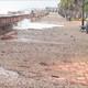 Les pluges i el vent danyen les platges del litoral de Castelló