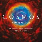 Cosmos, mundos posibles: 2- La gracia fugaz de la zona habitable