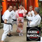 CAMINO MARCIAL nº 131 - VIAJE A JAPÓN