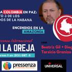Campaña Por Una Colombia en Paz e Incendios en Amazonía en @radiopressenza - 30/08/2019