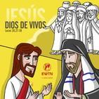 Domingo XXXII T.O: Día de la Iglesia Diocesana