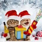 Os deseamos Feliz Navidad 2019!