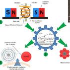 Nanopartículas para aplicaciones biomédicas. Efecto de las singularidades del agua (77)