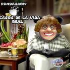panda show - un dramon de telenovela