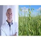 Recetas para preparar la Avena y los mitos en la alimentacion - Dr. Miquel Pros