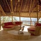 ¿Construir con Bambú? Primero debes conocer algunos factores.