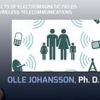 HOW TO ELECTROMAGNETIC FIELDS AFFECT HEALTH - Conference Olle Johansson