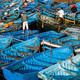 El acuerdo pesquero entre la UE y Marruecos ensombrece el futuro del Sáhara