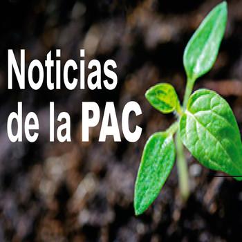 Noticias de la PAC 1.30/07/2020