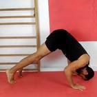 279. Cómo hacer flexiones en pica