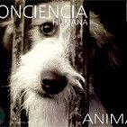 Conciencia animal 2