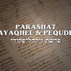 Parashat Vayaqhel y Pequdey - 2020 (Sobre el Shabat y su practicidad)