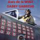 NdG Ases de la WW2 Gabby Gabreski, el azote de la Luftwaffe