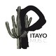 Pitayo Music, una opción de apoyo al músico y jazzista mexicano
