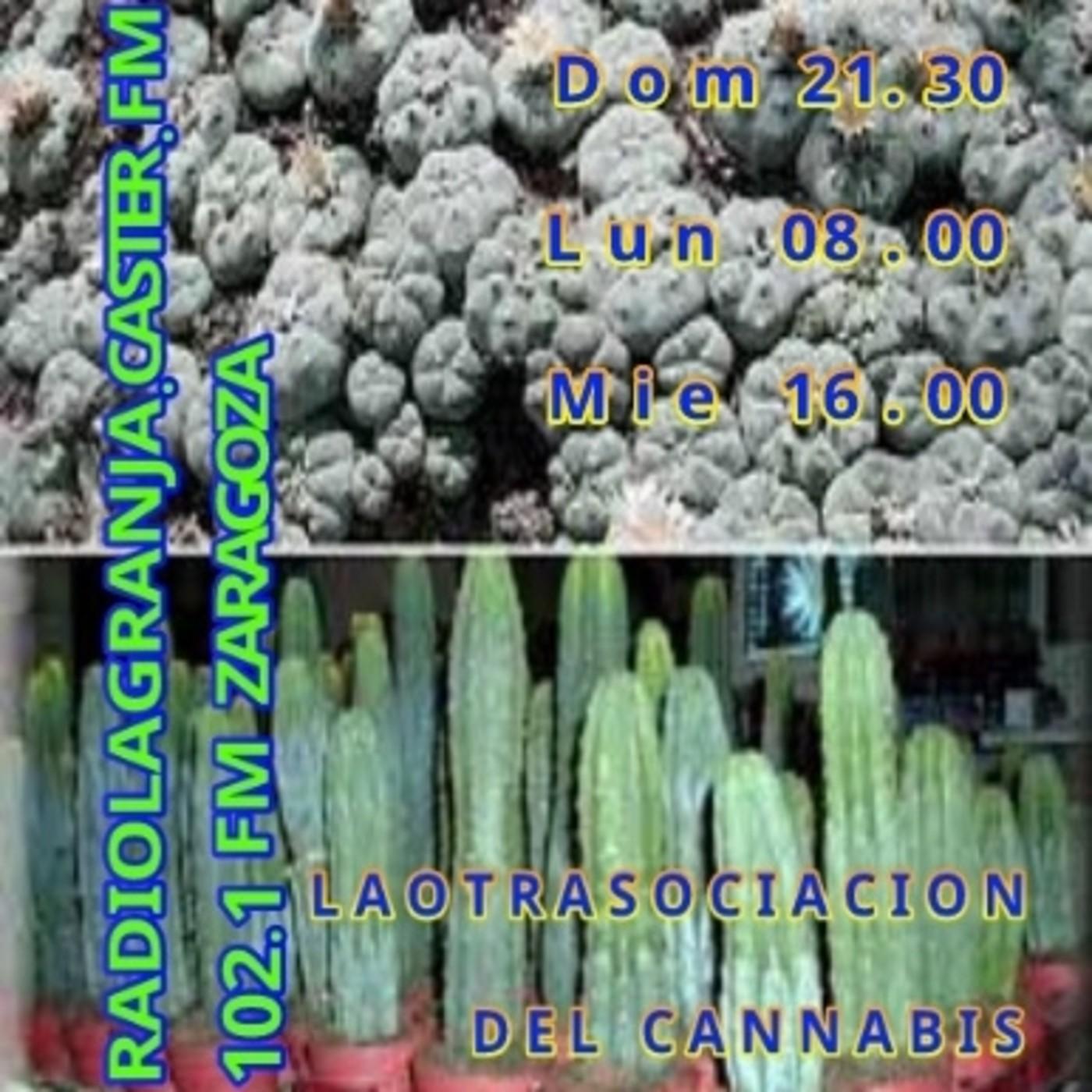 Jardines de Dios - Documental sobre drogas naturales