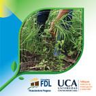 Conoce cómo disminuir la contaminación en la agricultura