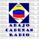 20161128-enrique-romero-y-adrian-salbuchi-the-economist
