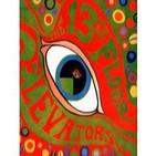 13th Floor Elevators - The psychedelic sounds of the 13th Floor Elevators (1966)